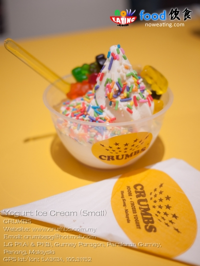 Yogurt Ice Cream (Small)