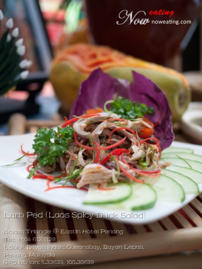 Larb Ped (Laos Spicy Duck Salad)