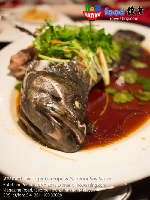 Steamed Live Tiger Garoupa w. Superior Soy Sauce