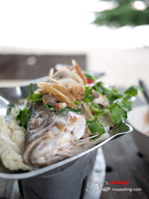 Thai Steamed Fish 泰式蒸鱼