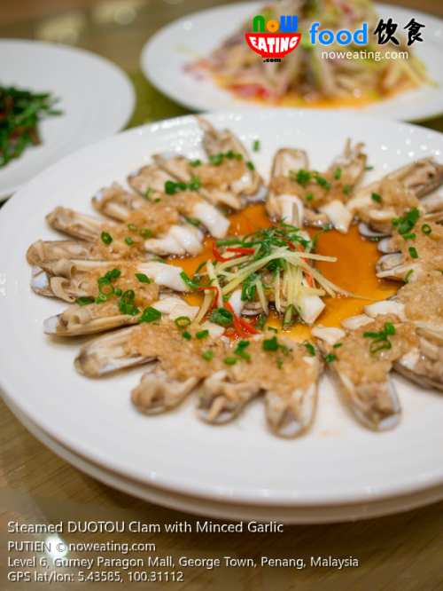 Steamed DUOTOU Clam with Minced Garlic