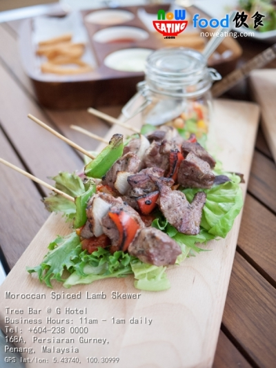 Moroccan Spiced Lamb Skewer