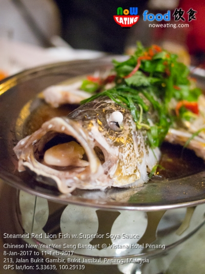 Steamed Red Lion Fish w. Superior Soya Sauce